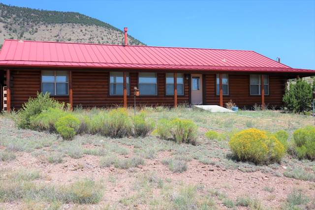 53 Hillside Circle, Datil, NM 87821 (MLS #998387) :: Campbell & Campbell Real Estate Services