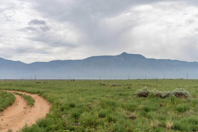 810 Meadow Lake Road, Meadow Lake, NM 87031 (MLS #998393) :: Campbell & Campbell Real Estate Services
