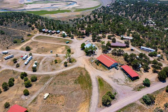 1409 State Road 95, Los Ojos, NM 87575 (MLS #998488) :: Campbell & Campbell Real Estate Services