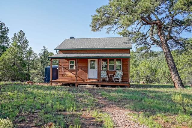 27 Cabin Ridge Road, Grants, NM 87020 (MLS #998547) :: Campbell & Campbell Real Estate Services