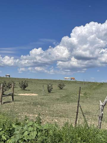 0 Martin Rd Moriarty, Nm 87035, Moriarty, NM 87035 (MLS #998691) :: The Buchman Group
