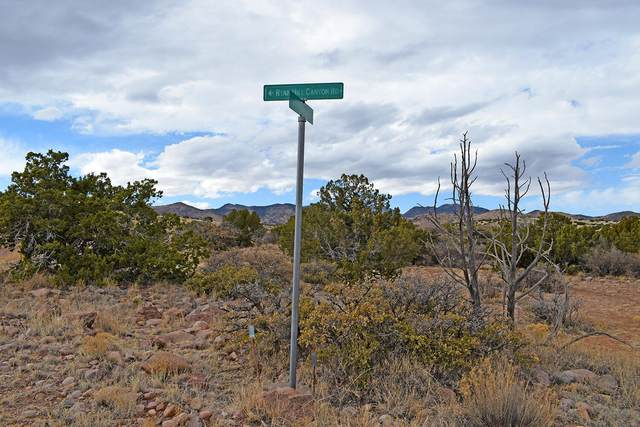 Lot 1A Willow Springs Ranch, San Antonio, NM 87832 (MLS #998755) :: Campbell & Campbell Real Estate Services