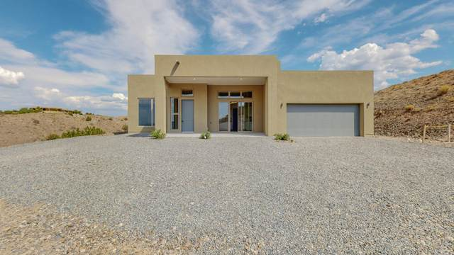 89 Camino Manzano, Placitas, NM 87043 (MLS #998869) :: Campbell & Campbell Real Estate Services