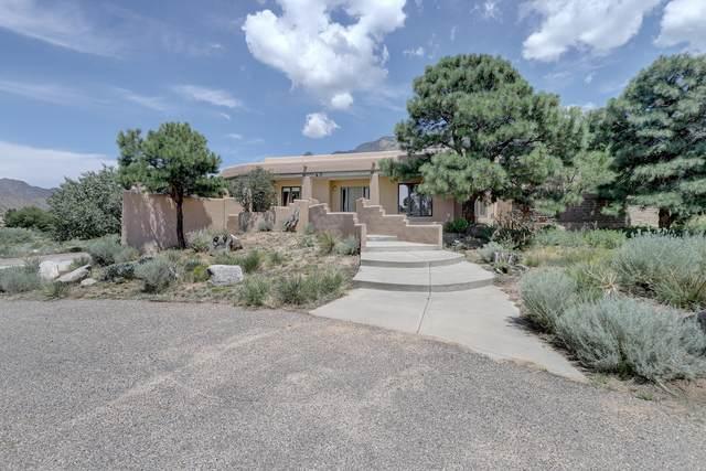 665 1/2 Roadrunner Lane NE, Albuquerque, NM 87122 (MLS #998893) :: Campbell & Campbell Real Estate Services