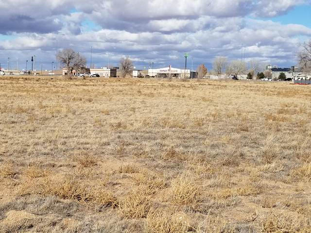 210 Howard Cavasos Boulevard, Moriarty, NM 87035 (MLS #998972) :: Campbell & Campbell Real Estate Services