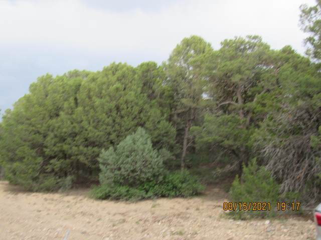 10 Manzano Loop L11,B7,, Tijeras, NM 87059 (MLS #999052) :: Campbell & Campbell Real Estate Services