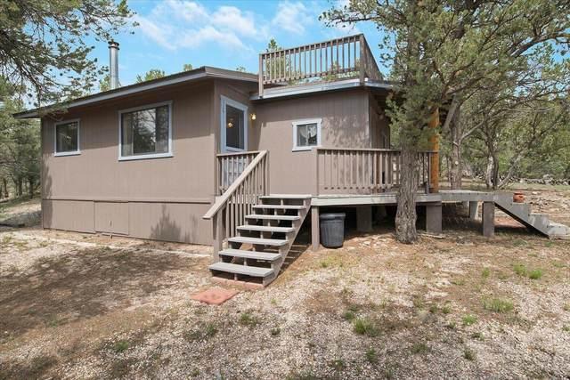 112 Sagebrush Road, Ramah, NM 87321 (MLS #999053) :: Campbell & Campbell Real Estate Services