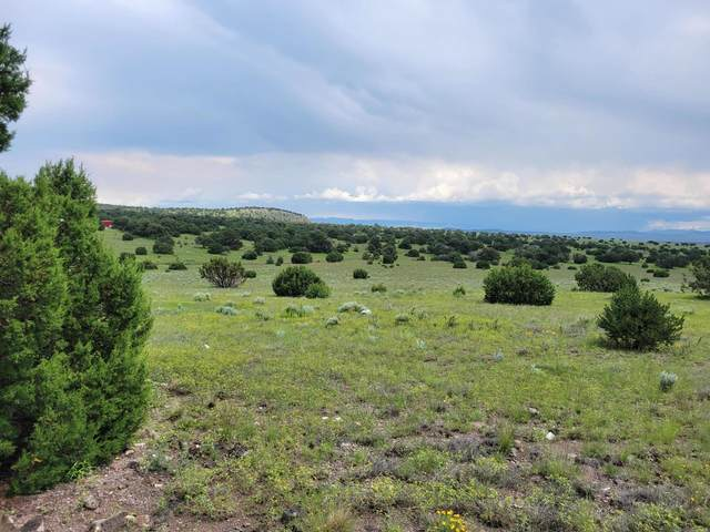 Southern Trail, Datil, NM 87821 (MLS #999063) :: Campbell & Campbell Real Estate Services
