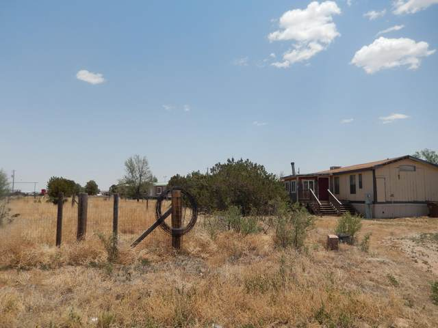305 S Mckinley Avenue, Mountainair, NM 87036 (MLS #999180) :: Campbell & Campbell Real Estate Services