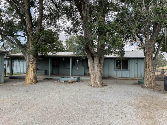 64 Old State Route 60, Datil, NM 87821 (MLS #999183) :: Campbell & Campbell Real Estate Services