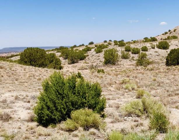 Calle Cienega Court, Placitas, NM 87043 (MLS #999198) :: Campbell & Campbell Real Estate Services