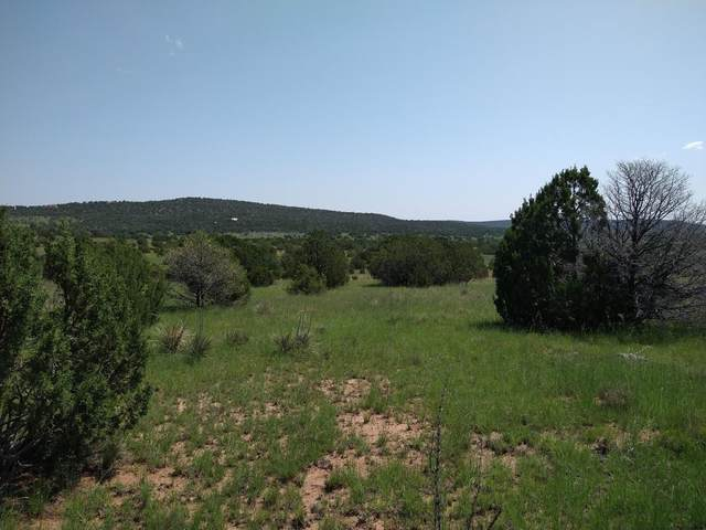 Lot 6 Wilson Ranch, Tajique, NM 87016 (MLS #999384) :: Campbell & Campbell Real Estate Services