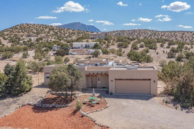 58 Loma Chata Road, Placitas, NM 87043 (MLS #999393) :: Campbell & Campbell Real Estate Services