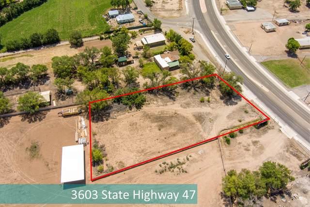 3603 State Highway 47, Peralta, NM 87042 (MLS #999411) :: Sandi Pressley Team