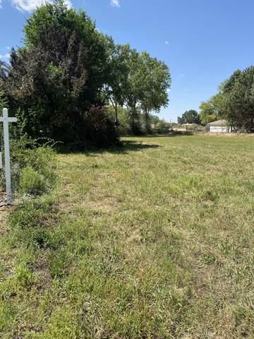 147 Sanchez Road, Corrales, NM 87048 (MLS #999423) :: Keller Williams Realty