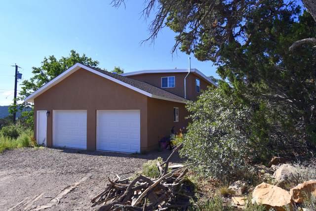 40 Mulberry Loop, Cedar Crest, NM 87008 (MLS #999425) :: Sandi Pressley Team