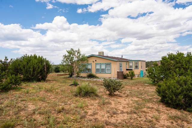 1 Mclaughlin Lane, Sandia Park, NM 87047 (MLS #999565) :: Campbell & Campbell Real Estate Services
