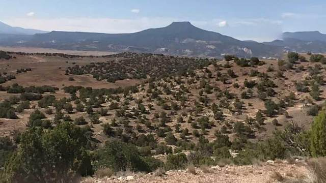 0 Tbd, Gallina, NM 87017 (MLS #999704) :: Campbell & Campbell Real Estate Services