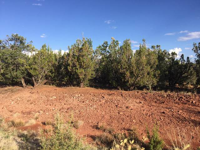 15 Tewa Court, Sandia Park, NM 87047 (MLS #999734) :: Campbell & Campbell Real Estate Services