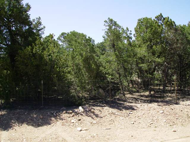 122 Marigold Lane, Edgewood, NM 87015 (MLS #999748) :: Campbell & Campbell Real Estate Services