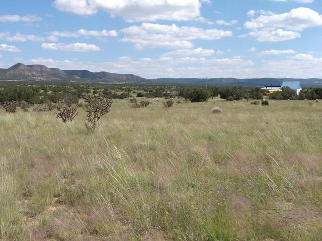 108 Cottage Loop, Mountainair, NM 87036 (MLS #999754) :: Campbell & Campbell Real Estate Services