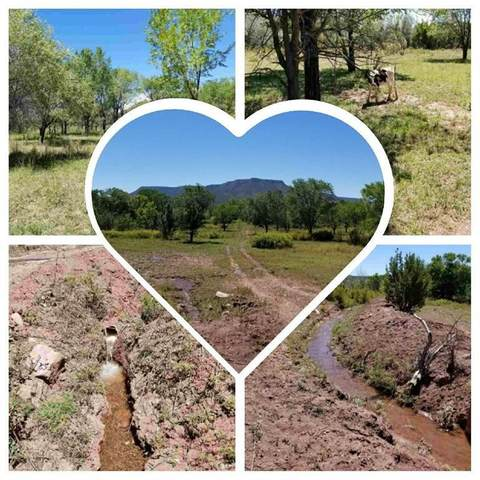 0 Agua Caliente, San Jose, NM 87560 (MLS #999853) :: Campbell & Campbell Real Estate Services