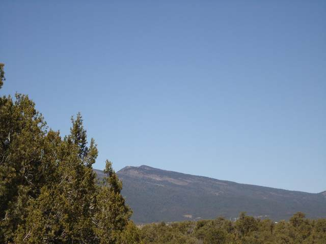 180 Forest Road 462, Tijeras, NM 87059 (MLS #999939) :: Campbell & Campbell Real Estate Services