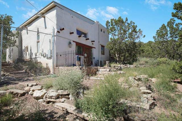 2 Cuchilla De Lupe Road, Placitas, NM 87043 (MLS #999940) :: Campbell & Campbell Real Estate Services