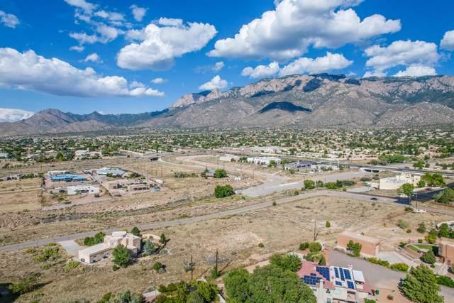 12420 San Bernardino Drive NE, Albuquerque, NM 87122 (MLS #1001064) :: HergGroup Albuquerque