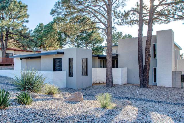 717 Wagon Train Drive SE, Albuquerque, NM 87123 (MLS #1001186) :: Campbell & Campbell Real Estate Services