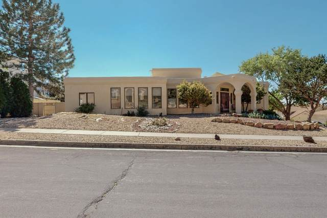 14000 Wind Mountain Road NE, Albuquerque, NM 87112 (MLS #1001214) :: Campbell & Campbell Real Estate Services