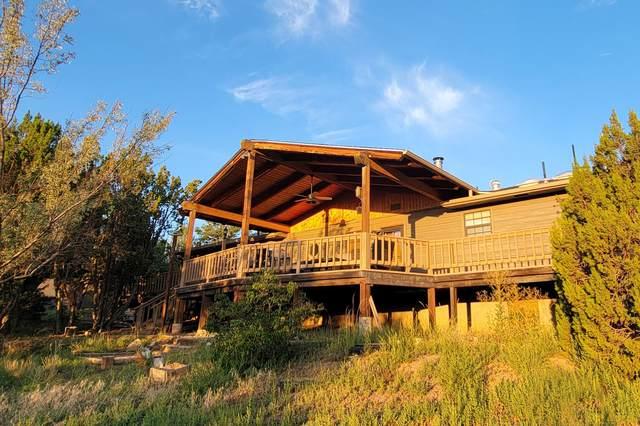 55 Las Palomas Lane, Sandia Park, NM 87047 (MLS #1001288) :: Campbell & Campbell Real Estate Services