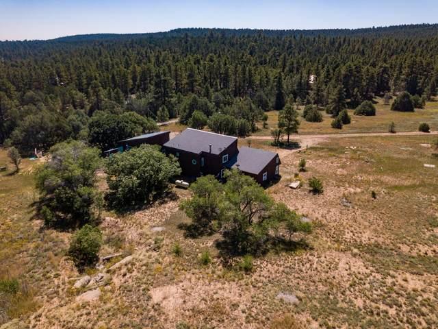 43 Apple Ranch Road, Tijeras, NM 87059 (MLS #1001374) :: Keller Williams Realty