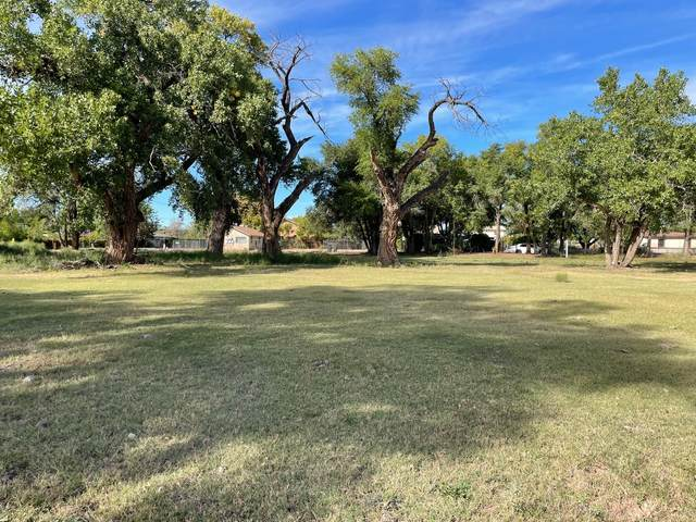 1914 Shadyside Drive SW, Albuquerque, NM 87105 (MLS #1002431) :: Campbell & Campbell Real Estate Services