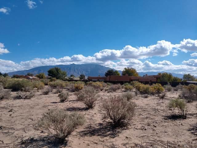 951 Camino Sin Posada Road, Corrales, NM 87048 (MLS #1002603) :: Keller Williams Realty