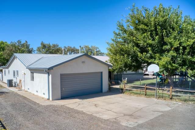 1195 Monte Vista Drive, Bosque Farms, NM 87068 (MLS #1002838) :: Sandi Pressley Team