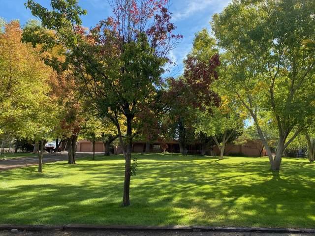 3002 Rio Bravo Boulevard SW, Albuquerque, NM 87105 (MLS #1003017) :: The Buchman Group