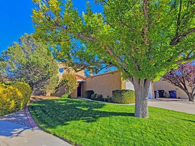 7408 Don Tomas Lane NE, Albuquerque, NM 87109 (MLS #1003264) :: Campbell & Campbell Real Estate Services