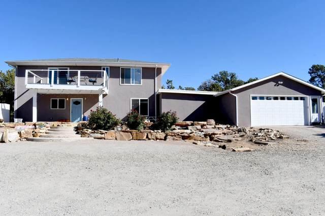 50 Sangre De Cristo Drive, Cedar Crest, NM 87008 (MLS #1003293) :: The Buchman Group