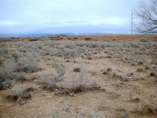 0 Sandhill Road, Los Lunas, NM 87031 (MLS #728656) :: Will Beecher at Keller Williams Realty