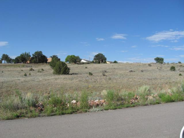 17 Joe Nestor Road, Edgewood, NM 87015 (MLS #802852) :: Campbell & Campbell Real Estate Services