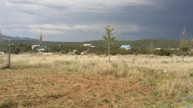 10 Colby Court, Edgewood, NM 87015 (MLS #802854) :: The Buchman Group