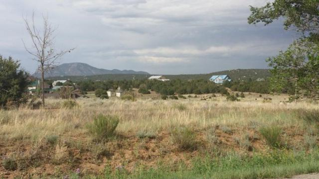 2 Pointe Court, Edgewood, NM 87015 (MLS #802856) :: The Buchman Group