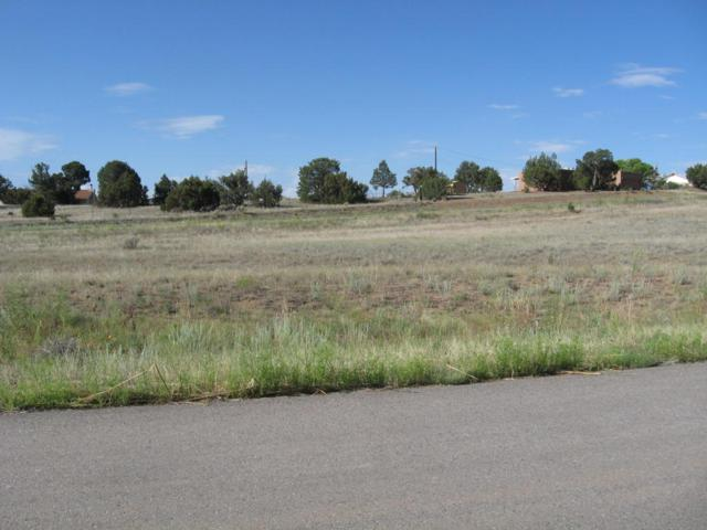 5 Pointe Court, Edgewood, NM 87015 (MLS #802858) :: Campbell & Campbell Real Estate Services