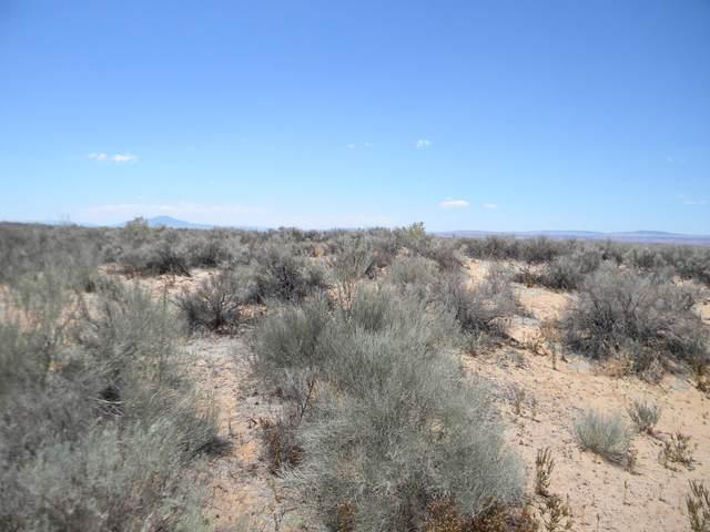 Witzend, Los Lunas, NM 87031 (MLS #816616) :: The Buchman Group