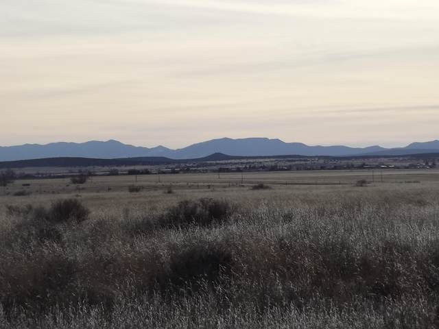 Union Avenue, Moriarty, NM 87035 (MLS #832055) :: The Bigelow Team / Red Fox Realty