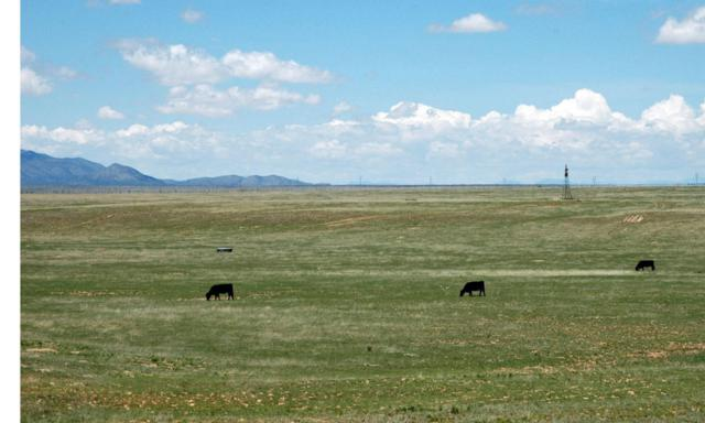 4049 Nm-41, Stanley, NM 87056 (MLS #840827) :: Campbell & Campbell Real Estate Services
