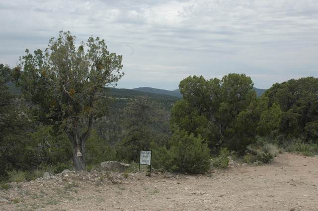 3 Enchantment View (L16,B6,Fh), Tijeras, NM 87059 (MLS #841343) :: The Buchman Group