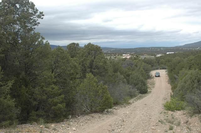 9 Manzano (L55,B6,Fh) Loop, Tijeras, NM 87059 (MLS #866367) :: The Bigelow Team / Red Fox Realty