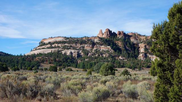 B Box S Ranch Road, Ramah, NM 87321 (MLS #877712) :: Keller Williams Realty